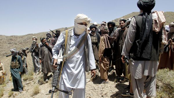 In this Friday, May 27, 2016 photo, members of a breakaway faction of the Taliban fighters walks during a gathering, in Shindand district of Herat province, Afghanistan - Sputnik International