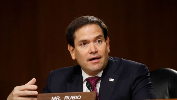 U.S. Sen. Marco Rubio (R-FL) speaks during a Senate Intelligence Committee nomination hearing for Rep. John Ratcliffe (R-TX), on Capitol Hill in Washington, U.S., May 5, 2020 - Sputnik International