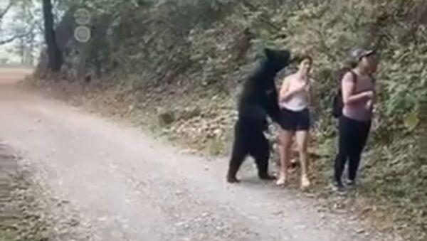 Couple goal: a bear and a girl make selfie together - Sputnik International