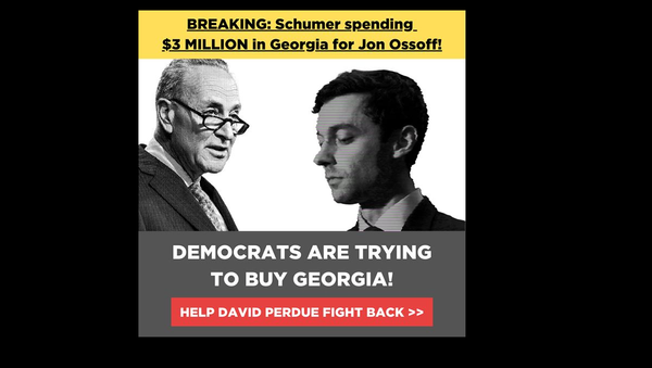BREAKING: Chuck Schumer's super PAC is spending $3 MILLION on false attack ads against me!  I need YOU to help me set the record straight. We must not let Schumer and the radical left buy Georgia's Senate for the Democrats! - Sputnik International