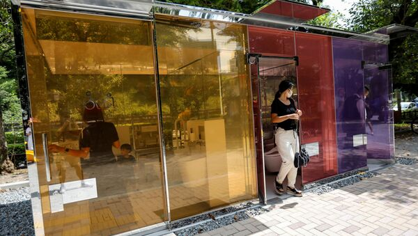 Visitors try out the transparent public toilets that become opaque when occupied, designed by Japanese architect Shigeru Ban, at Yoyogi Fukamachi Mini Park in Tokyo, Japan August 26, 2020 - Sputnik International