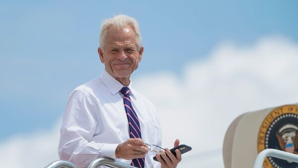 White House economic advisor Peter Navarro looks down from the steps of Air Force One as he waits to depart with U.S. President Donald Trump for travel to Ohio and New Jersey at Joint Base Andrews, Maryland, U.S., August 6, 2020. - Sputnik International