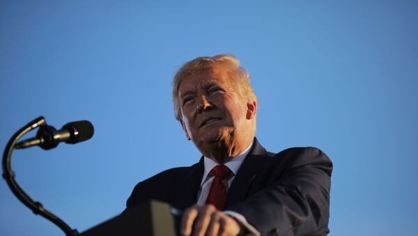 U.S. President Donald Trump holds a campaign rally in Londonderry, New Hampshire, U.S., August 28, 2020 - Sputnik International