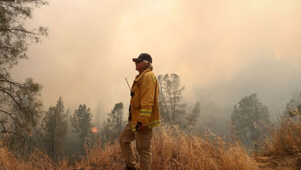 A firefighter monitors the LNU Lightning Complex Fire as it engulfs trees and brush in Lake County, California, U.S. August 23, 2020. - Sputnik International