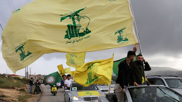 FILE PHOTO: A supporter of Lebanon's Hezbollah gestures as he holds a Hezbollah flag in Marjayoun - Sputnik International