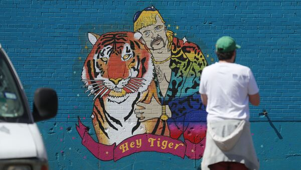 A man looks at a mural depicting Joseph Maldonado-Passage, also known as Joe Exotic, in Dallas, Friday, April 10, 2020. The Netflix series Tiger King, has become popular watching during the COVID-19 outbreak. Maldonado-Passage was convicted in an unsuccessful murder-for-hire plot. - Sputnik International