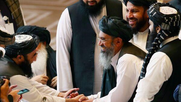 Taliban delegates shake hands during talks between the Afghan government and Taliban insurgents in Doha, Qatar September 12, 2020 - Sputnik International