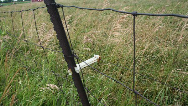 Detail of electric fence - Sputnik International