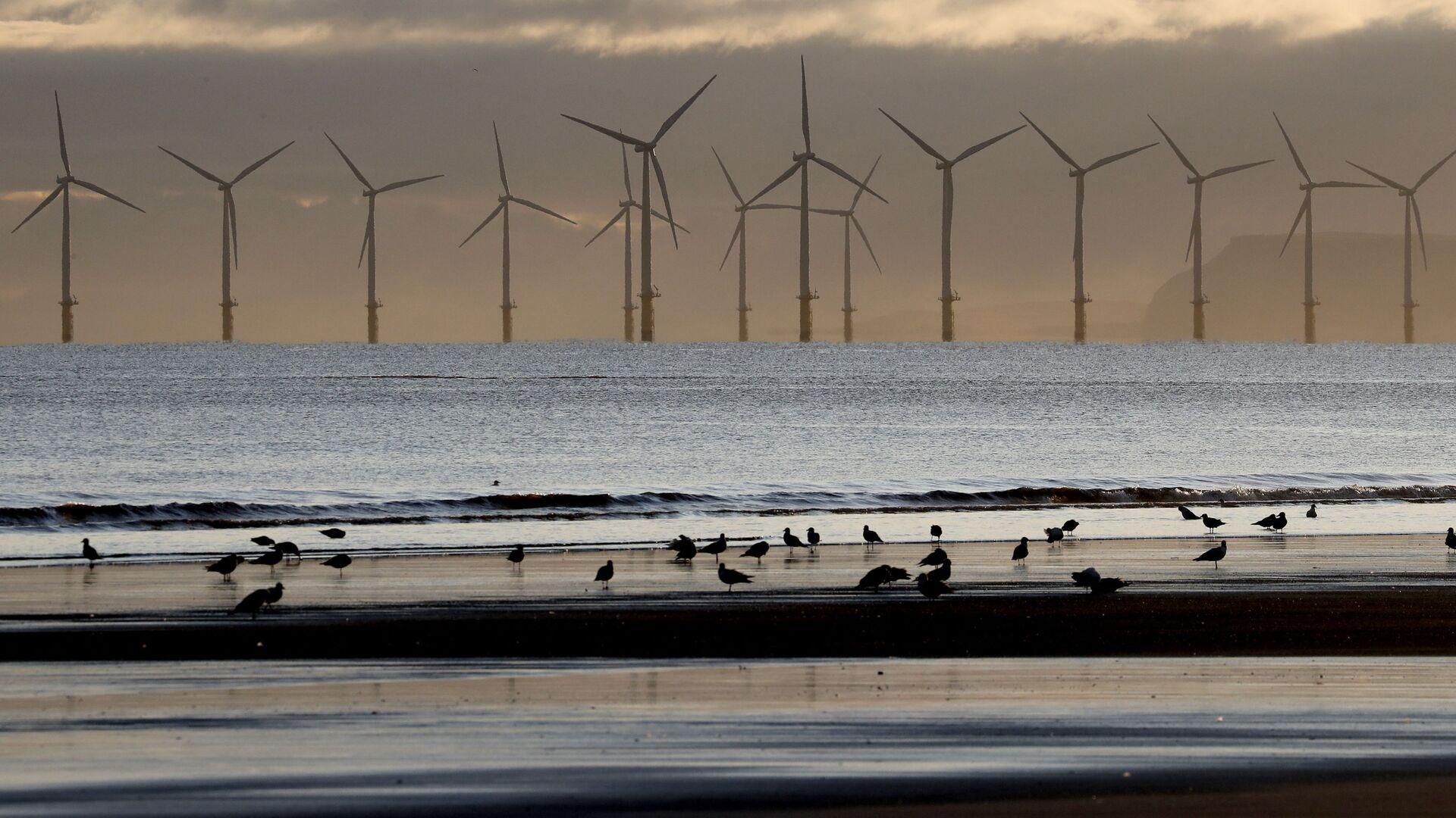 A wind farm off the coast - Sputnik International, 1920, 07.09.2021