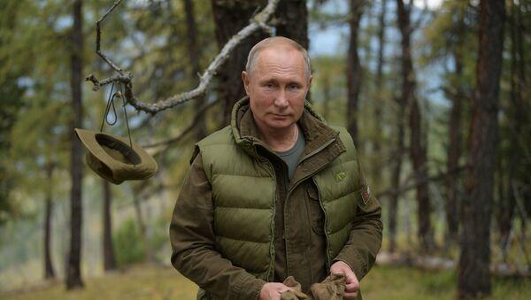 Russian President Vladimir Putin enjoys a walk during his leisure time in the Siberian Taiga area, Russia. 07.10.2019 - Sputnik International