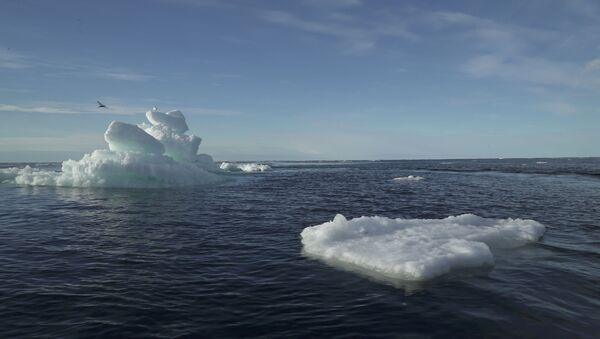 Floating ice is seen during the expedition of the The Greenpeace's Arctic Sunrise ship at the Arctic Ocean - Sputnik International