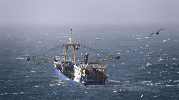 A fishing boat at work in the English Channel, off the southern coast of England, Saturday Feb. 1, 2020. The fishing industry is predicted to be one of the main subjects for negotiations between the UK and Europe, after the UK left the European Union on Friday. - Sputnik International