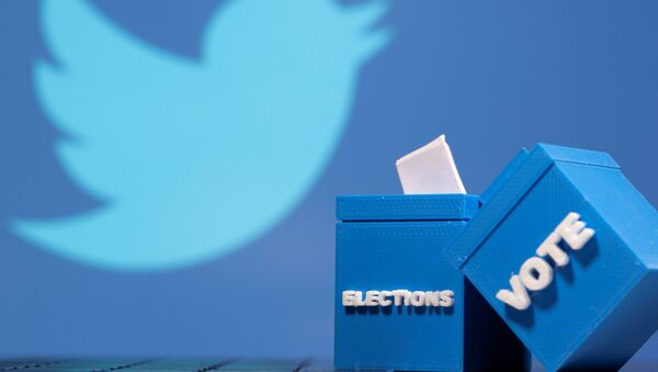 3D printed ballot boxes are seen in front of a displayed Twitter logo in this illustration taken November 4, 2020 - Sputnik International
