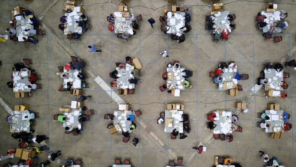 Electoral workers count ballots from briefcases with uncounted ballots for the election of local leaders in a tabulation centre at the Roberto Clemente Coliseum in Puerto Rico - Sputnik International