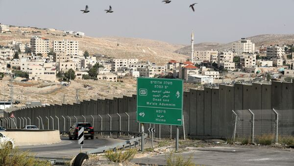 Birds fly as vehicles drive near the Hizma checkpoint in the Israeli-occupied West Bank, November 12, 2020. - Sputnik International