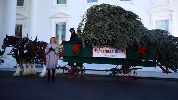 U.S. first lady Melania Trump applauds the arrival of the White House Christmas Tree, an 18.5-foot Fraser Fir from Oregon, as it arrives outside the White House in Washington, U.S., November 23, 2020 - Sputnik International