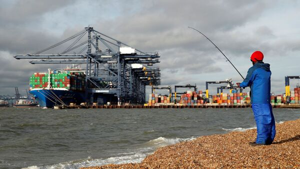The CSCL Mercury and containers are seen at The Port of Felixstowe as a man fishes, in Felixstowe, Britain, November 17, 2020.   - Sputnik International
