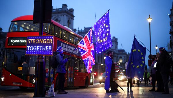 Anti-Brexit protesters demonstrate outside the Houses of Parliament in London, Britain December 9, 2020 - Sputnik International