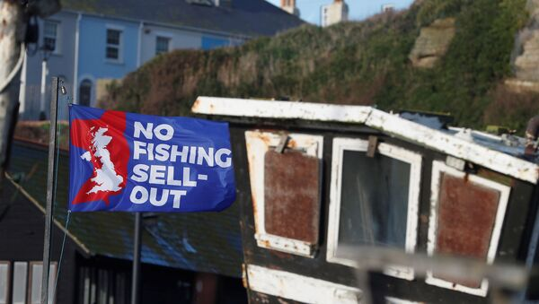 A flag with a slogan supporting the UK fishing industry is seen on the beach in Hastings, Britain, 20 December 2020.  - Sputnik International