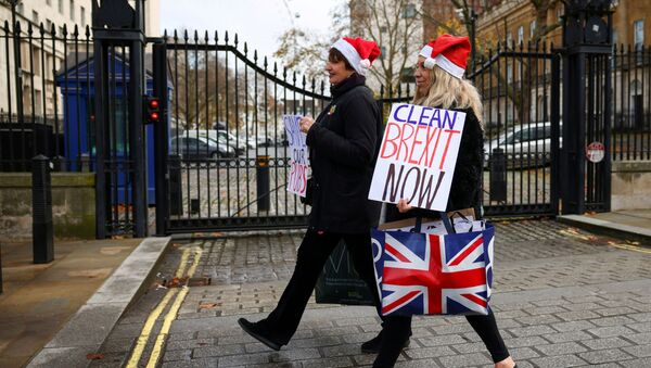 Pro-Brexit supporters carry placards as they walk in Westminster, London, Britain December 9, 2020 - Sputnik International