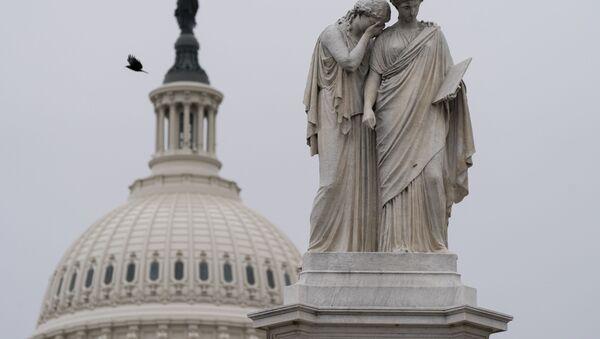 Birds fly around the Peace Monument, Friday, Jan. 8, 2021, on Capitol Hill in Washington. - Sputnik International