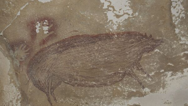 This undated handout photo shows a dated pig painting at Leang Tedongnge in Sulawesi, Indonesia - Sputnik International