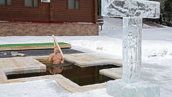 Russian President Vladimir Putin takes a dip during celebrations of the Orthodox Christian feast of Epiphany in Moscow region, Russia  - Sputnik International