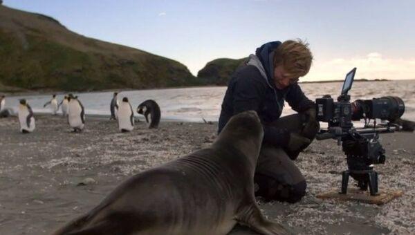 Man films wildlife - Sputnik International