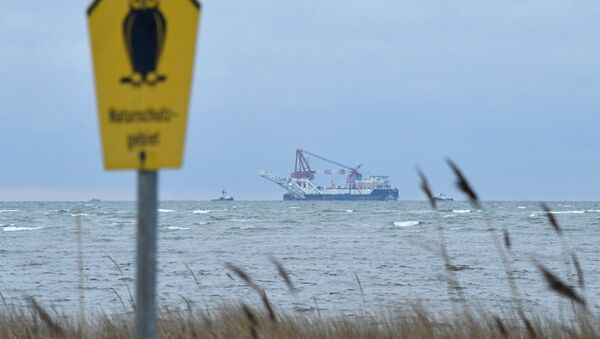 The Russian pipe-laying ship Fortuna is seen in the Mecklenburg Bay ahead of the resumption of Nord Stream 2 gas pipeline construction near Insel Poel, Germany January 14, 2021.  - Sputnik International