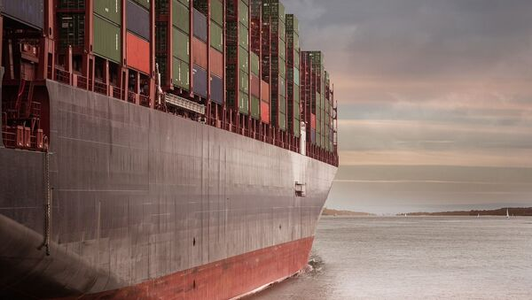 Container carrier - Sputnik International