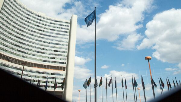 The flag of the International Atomic Energy Agency (IAEA) flutters in front of the IAEA building in Vienna on July 10, 2019. - The UN's nuclear watchdog will hold a special meeting on Iran's nuclear programme, after Tehran breached one of the limits set in a 2015 deal with world powers. - Sputnik International