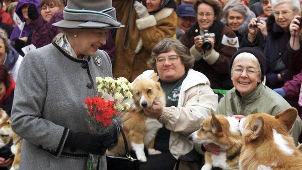Queen Elizabeth II talks with members of the Manitoba Corgi Association during a visit to Winnipeg 08 October 2002. The queen, making her 20th trip to Canada, is the last stop on the year-long jubilee tour celebrating her 50-year reign.  - Sputnik International