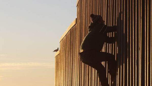 Honduran migrant Jonatan Matamoros Flores, 33, who arrived in October with a migrant caravan, climbs the U.S. border wall to stand atop it before returning to the Mexican side in Tijuana, Mexico, Saturday, Dec. 8, 2018 - Sputnik International