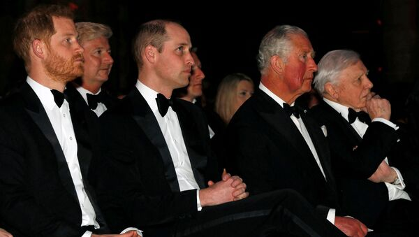 Britain's Prince Harry, Duke of Sussex (L), Britain's Prince William, Duke of Cambridge (3rd L), Britain's Prince Charles, Prince of Wales (2nd R) and British naturalist, documentary maker and broadcaster David Attenborough (R) take their seats for the Global Premiere of Our Planet in London on April 4, 2019. - Sputnik International
