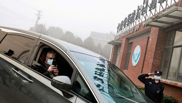 Dominic Dwyer, a member of the World Health Organization (WHO) team tasked with investigating the origins of the coronavirus disease (COVID-19), sits in a car arriving to Wuhan Institute of Virology inWuhan, Hubei province, China February 3, 2021.  - Sputnik International