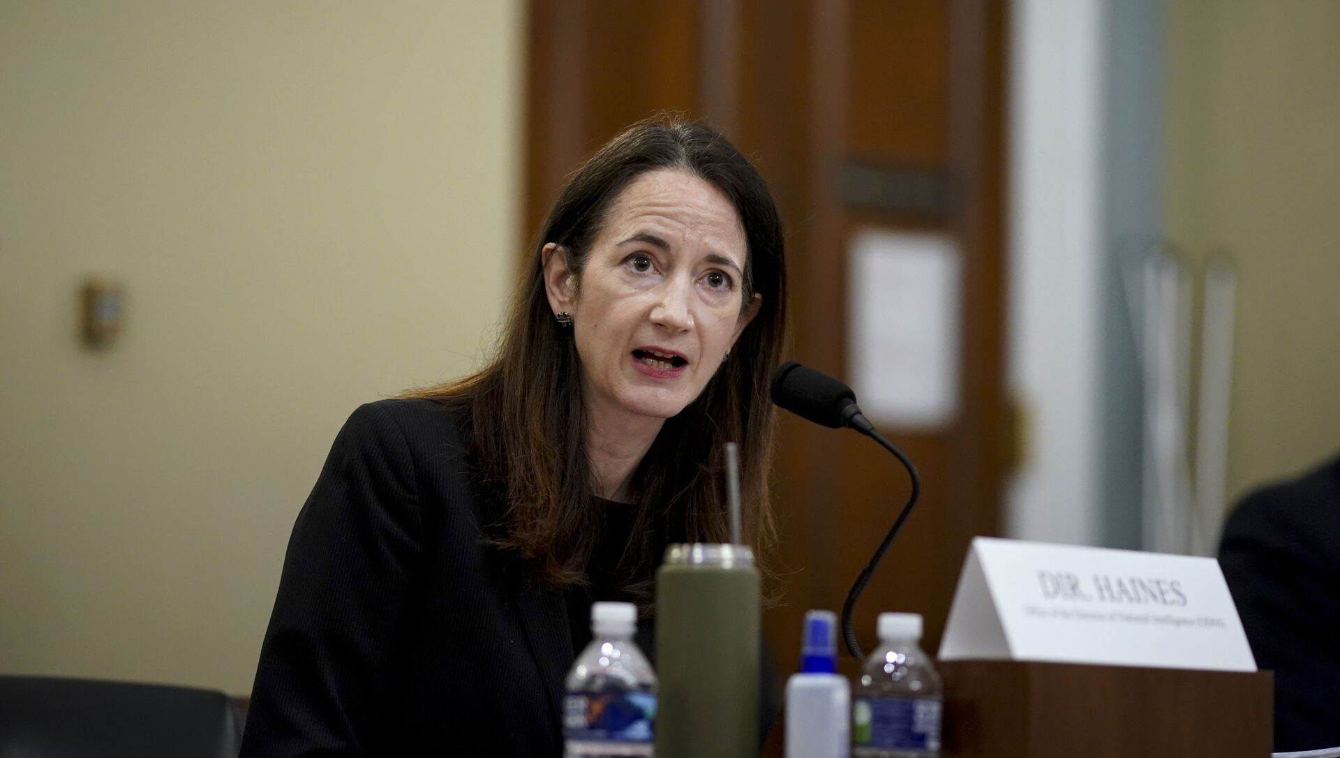 Director Avril Haines of the Office of the Director of National Intelligence (ODNI) testifies during a House Intelligence Committee hearing on Capitol Hill in Washington, Thursday, April 15, 2021 - Sputnik International, 1920, 16.04.2021