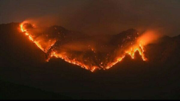 The forest in Mizoram, has been on wildfire for more than 24 hrs, spreading to this hour and on the verge of reaching the 2nd biggest settlement area, Lunglei town - Sputnik International