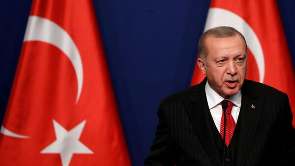 Turkish President Recep Tayyip Erdogan attends a news conference with Hungarian Prime Minister Viktor Orban (not pictured) in Budapest, Hungary November 7, 2019. REUTERS/Bernadett Szabo/File Photo - Sputnik International