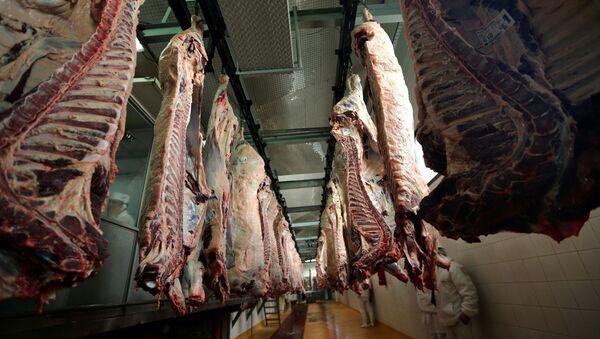 Beef carcasses hanging up at an abattoir in Argentina.  - Sputnik International