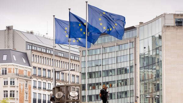 European Union flags flap in the wind as two gardeners work on the outside of EU headquarters in Brussels, Wednesday, Sept. 11, 2019.  - Sputnik International
