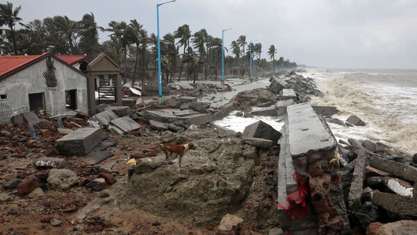 A dog walks on the debris of the damaged tourist lodges along a beach front following Cyclone Yaas in Shankarpur, Purba Medinipur district in the eastern state of West Bengal, India, May 27, 2021 - Sputnik International