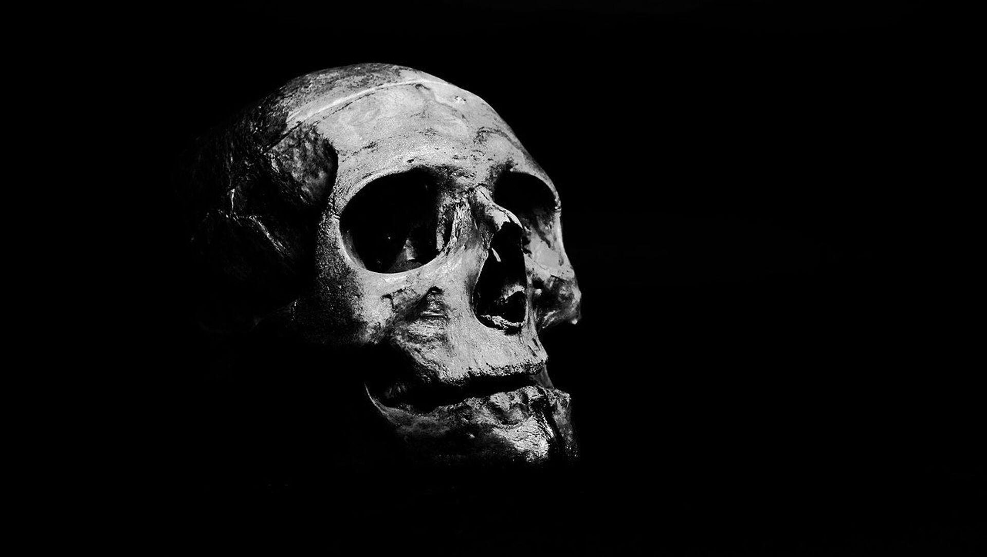 Skull on grayscale - Sputnik International, 1920, 25.08.2021