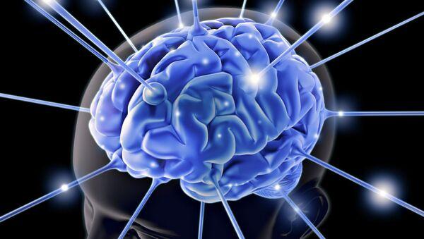 Brain Wallpaper - Sputnik International