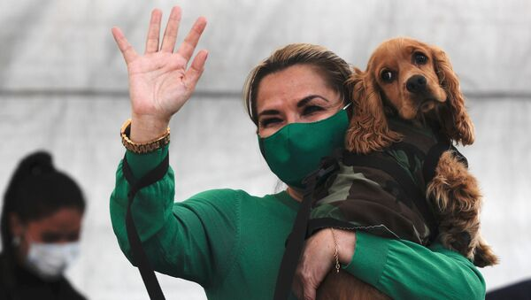 Bolivia's interim President Jeanine Anez, wearing a mask amid the new coronavirus pandemic, carries her dog as she greets people during an announcement to create a shelter for abandoned animals in La Paz, Bolivia, Sunday, Sept. 20, 2020. - Sputnik International