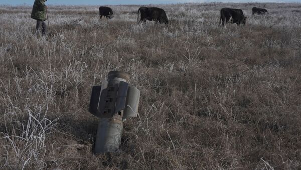 A man shepherds his cows near a rocket case left after a military conflict over Nagorno-Karabakh region, outside Stepanakert January 6, 2021. - Sputnik International