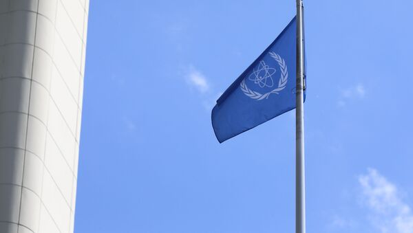 The flag of the International Atomic Energy Agency, IAEA waves at the entrance of the Vienna International Center in Vienna, Austria, Monday, June 7, 2021. - Sputnik International