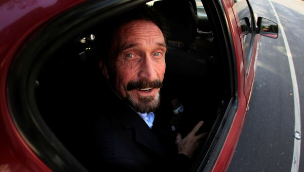 Software pioneer John McAfee is escorted by immigration officers to the Guatemalan Airport in Guatemala City December 12, 2012.  - Sputnik International