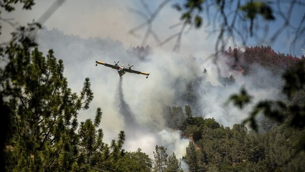 An air tanker drops fire retardant to battle the Salt Fire in Lakehead, Calif., on Thursday, July 1, 2021. Firefighters are battling multiple fires in the region following high temperatures and lightning strikes. - Sputnik International