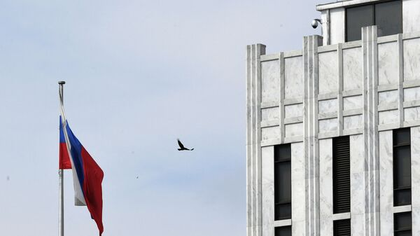 A bird flies past a Russian flag at the Embassy of Russia in Washington, DC on April 15, 2021. - Sputnik International