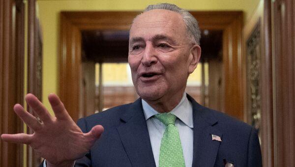Senate Majority Leader Schumer speaks to news reporters following a deal on infrastructure on Capitol Hill in Washington - Sputnik International